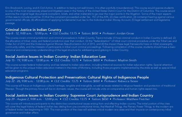 2019 Summer Indian Law Brochure 5.5x8.5-final_Page_3