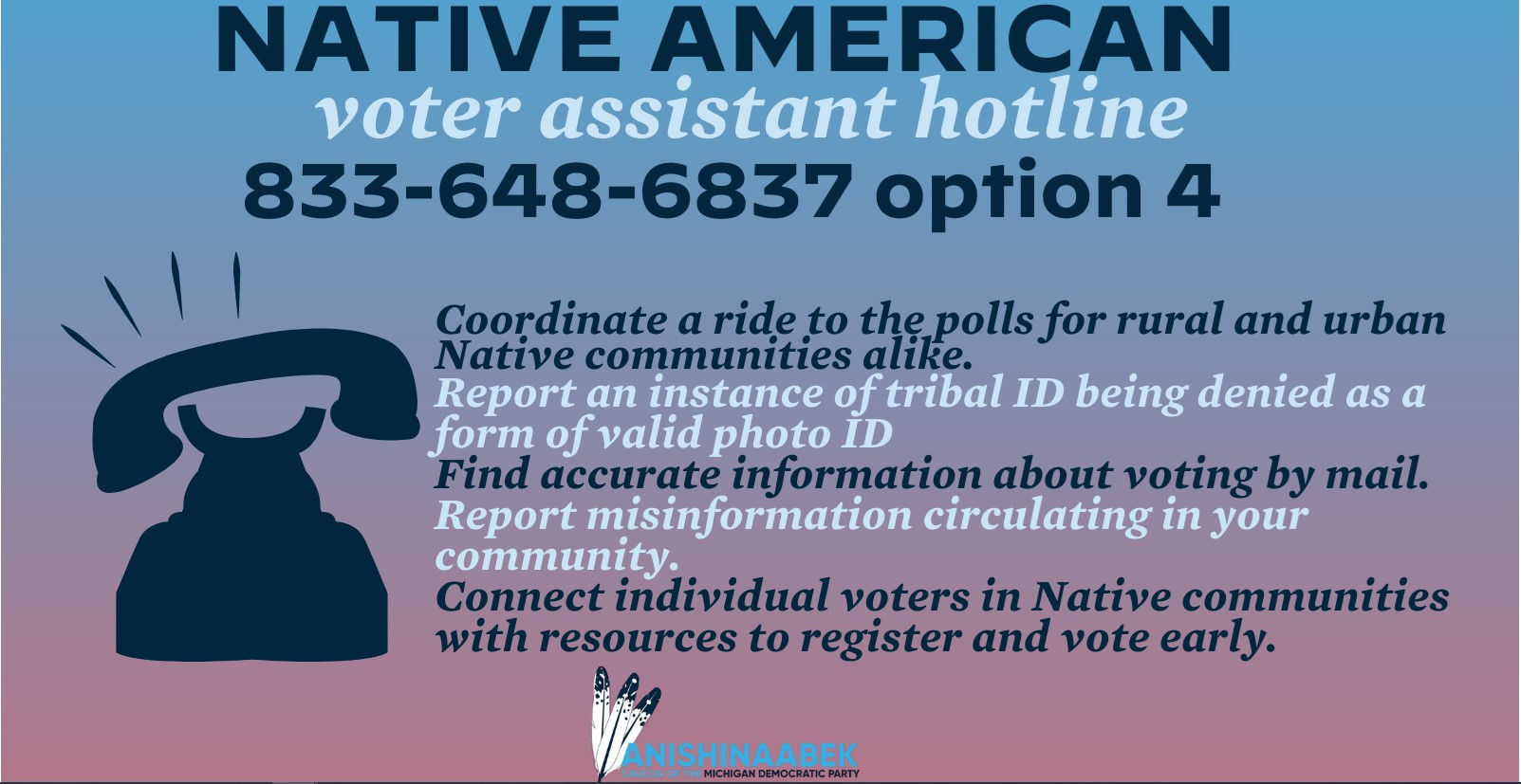 Voter Hotline